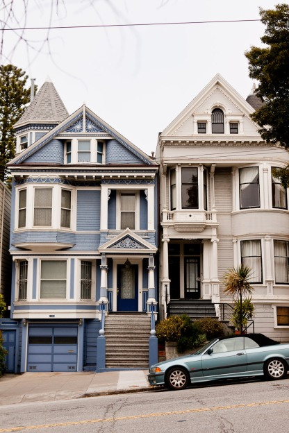 Hello, Painted Ladies