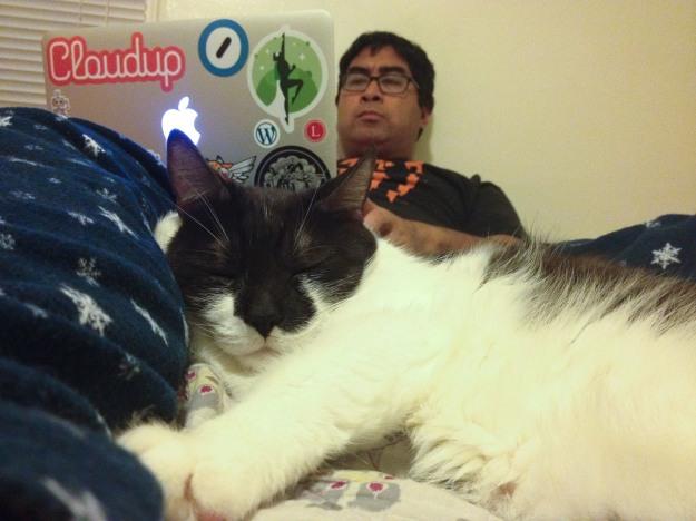 Teh cuddles